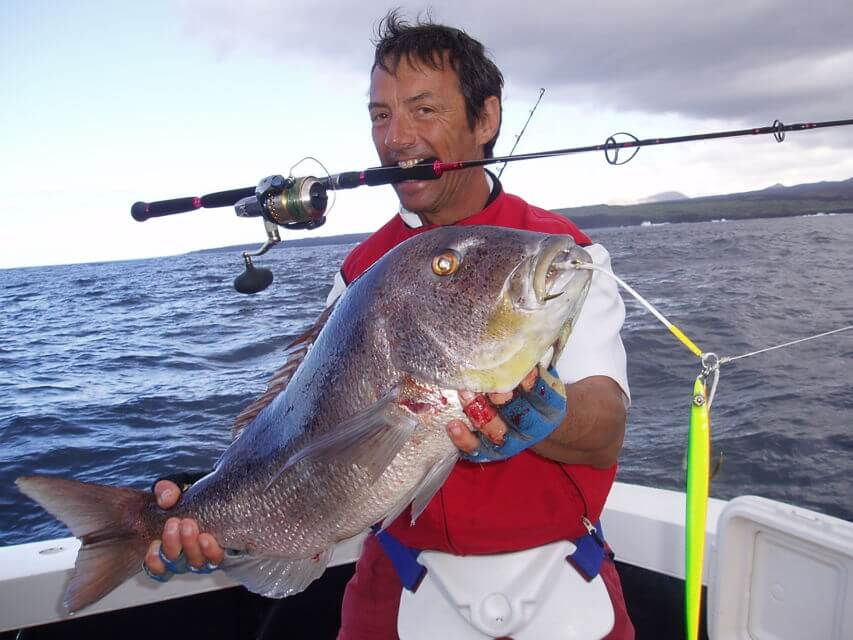Spend a day out on the Adriatic Sea on a big game fishing trip